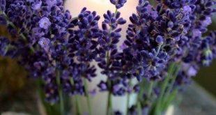 Windlicht Garten Blumen selber machen #blumen #garten #machen #selber #windlich...