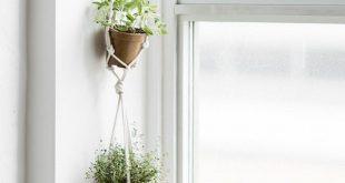 17 Hängende Kräutergarten-Ideen für kleine Räume! - Brandi Raae