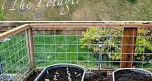 22 Tipps für den Anbau eines schönen Gemüsegartens