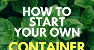 How To Start Your Own Container Herb Garden - FarmFoodFamily.Com