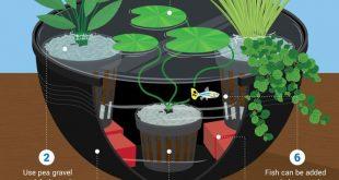 Instant DIY Water Garden - Funktionen von Wasser für Wasser #funktionen #garde...