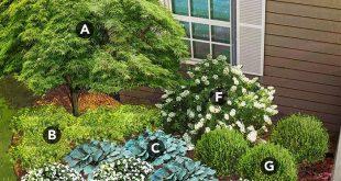 shade garden plan for south region featuring Japanese maple, mahonia, hosta, New...