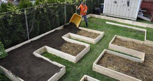 Dem Lasagne-Garten eine Bodenschicht hinzufügen. Ich liebe dieses Layout