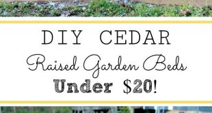 EASY DIY RAISED GARDEN BEDS ON A BUDGET