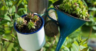 Originelle Pflanzgefäße: 21 pfiffige Ideen für jeden Geschmack