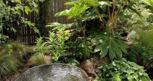 Small Water Garden Designs