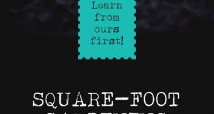 Square Foot Gardening Mistakes - Learn from Ours First