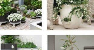 Weiß und Grün in einem Zaun