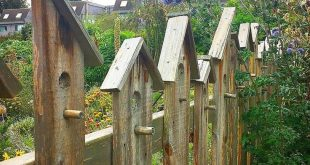 11 Surprising Reasons You'll Love Fencing That's Barely There