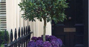 35 Haustür Blumentöpfe für einen guten ersten Eindruck
