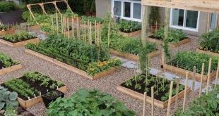 75 Stunning Backyard Vegetable Garden Design Ideas