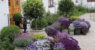 80 Best Patio Container Garden Design Ideas