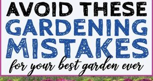 Avoid These 10 Landscaping Mistakes For Your Best Garden Ever