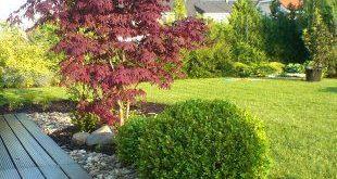 Baum als Grundlage des Gartens (TIP ZC CS), #als #Baum #Des #GardenPlanningbeginner #GardenP...