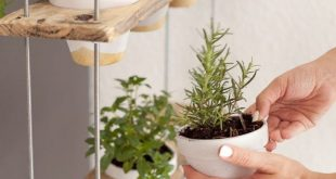 Brauch hängender Kräutergarten DIY #brauch #hangender #krautergarten