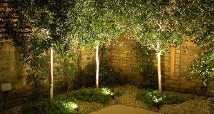 Contemporary architectural garden 7 copyright Light IQ Charlotte Rowe