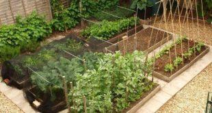 Garden Types Friday Link Love Weekend Sales #garden #gardentypes #gardening #ya...