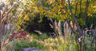 Garten planen und anlegen. Gartenplanung Renate Waas, Gartenarchitekt, München