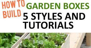 Gartenarbeit, Hausgarten, Gartenhacks, Gartentipps und -tricks, Pflanzenzüchtung, Pl