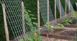 Hochbeete - Exterieur und Garten - Inspiration