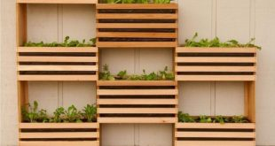 How to: Machen Sie einen modernen, platzsparenden vertikalen Gemüsegarten #eine...
