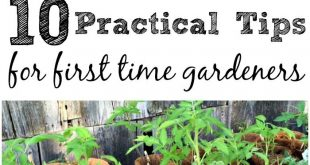 If you want to start your first garden but aren't sure where to start, these...