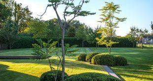 Landschaftsgärten von Garden Company 't Groene Plan - Organisch chlorfrei ....