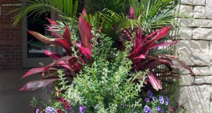 Stupendous Tricks: Modern Garden Landscaping Inspiration garden landscaping desi...