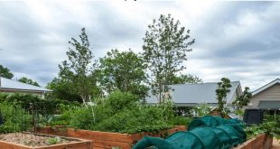 #gardening #gardenbed Erhöhtes Gartenbett. Erhöhte Gartenbetten sorgen für vi...